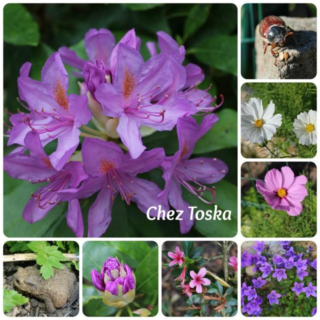 jardin_habite_2